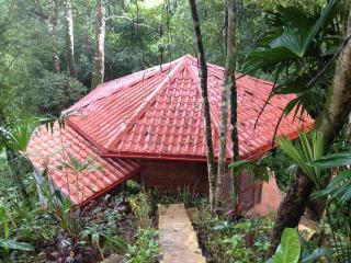 Waterfall Villa with Private Waterfall & Pool - Dominical vacation rentals