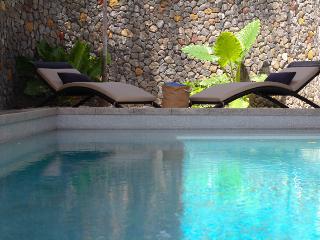 The Colony at Nosara - The River House - Nosara vacation rentals