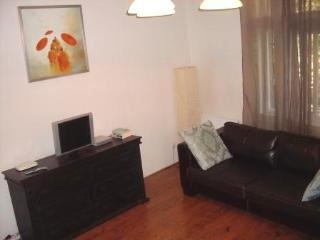 Big Dositejeva Apartment - Belgrade City Centre - Belgrade vacation rentals