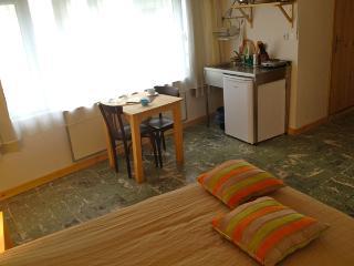 Charming Studio Centraly In Galata Istanbul - Istanbul & Marmara vacation rentals