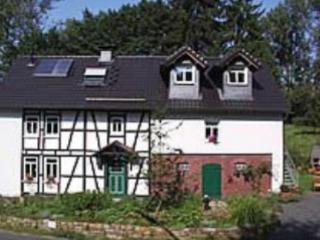 Vacation Home in Busenhausen - quiet, comfortable, beautiful (# 3989) - Busenberg vacation rentals