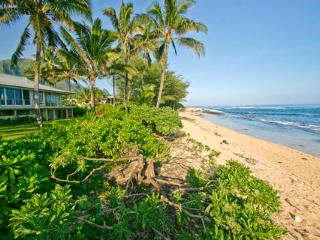 King Hale ~ RA3327 - Kilauea vacation rentals
