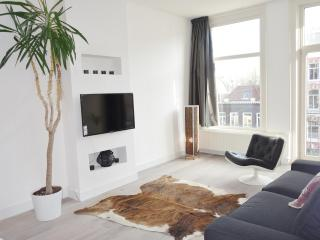 Stylish, central, just renovated 2b by Vondelpark - Haarlem vacation rentals