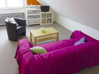 Private accommodation - very quiet apartment in Ratingen nearby Dusseldorf - Ratingen vacation rentals