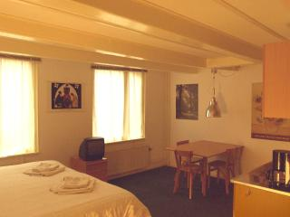 Quiet central 17th century monument - Amsterdam vacation rentals