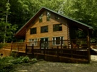 Secluded Log Cabin with Hot Tub under the Stars - Bristol vacation rentals