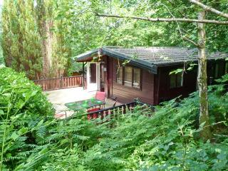 TOP LODGE, on-site facilities, pets welcome, great touring base, near Windermere, Ref. 26654 - Windermere vacation rentals