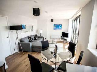 The Oxford House Standard Apartment - London vacation rentals