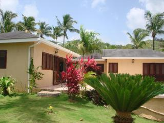 (Villa Monica) - Las Terrenas vacation rentals