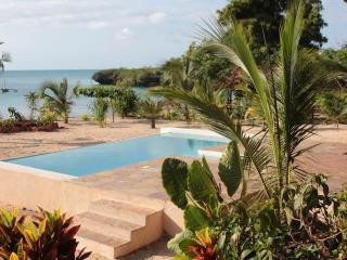 Milele Villas - Villa Tatu - Nungwi vacation rentals