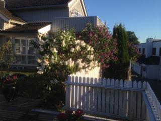 Leilighet i villa ved sjøen, idylliske Son havn. - Eastern Valleys vacation rentals