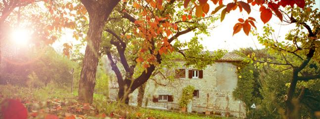 Autumn view - I Piantoni di Penna: a charming experience - Penna in Teverina - rentals