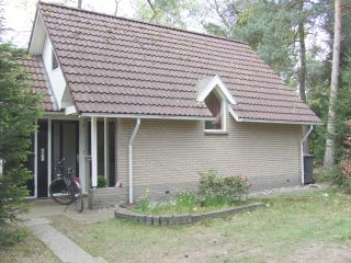 Chalet in the woods, in the East of the Netherlands - Holten vacation rentals