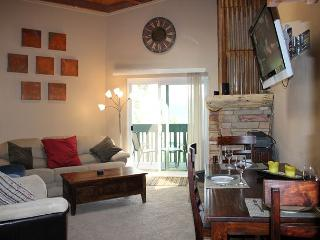 TH302H Awesome Condo w/Wifi, Clubhouse, Mountain Views - Silverthorne vacation rentals