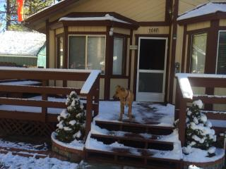 DOG FRIENDLY-Flying Bear Cabin A Pilot's Paradise! - Big Bear City vacation rentals