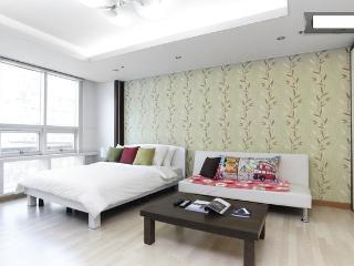 Gangnam Comfortable Studio #1 - South Korea vacation rentals