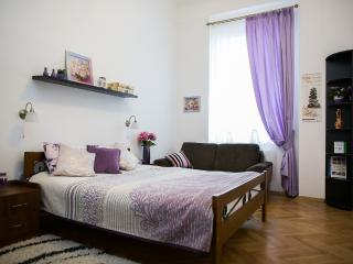 Nice Sunny 2-be with balcony on Kopernika Street - Lviv vacation rentals