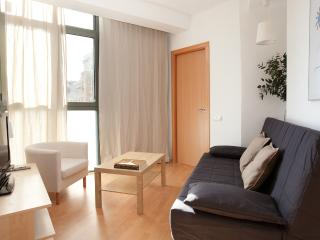 Sagrada Familia design 1 - Barcelona Province vacation rentals