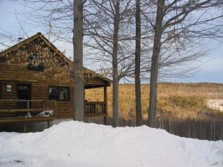 Mountain Top  Log Home - Bartlett vacation rentals