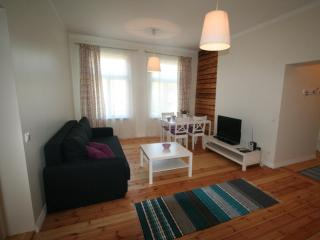 Apartment - great location, everything is close - Parnu vacation rentals