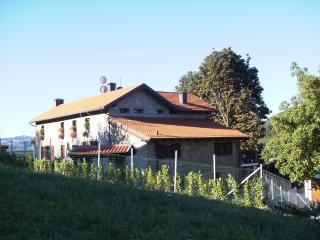 Agriturismo Bosco della Luja - Loazzolo vacation rentals