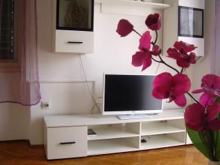 Large apartment in Split/Croatia -  apartment Orhideja - Split-Dalmatia County vacation rentals