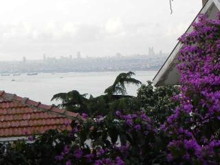 taras_0 - Istanbul vacation rentals