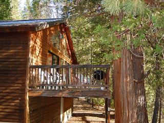 (5N) Edmond's Place - Yosemite National Park vacation rentals