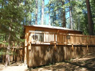 (9s) Pine Cabin - Yosemite National Park vacation rentals