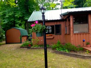 Adorable Log Cabin on Duck Lake Peninsula - Lake Ann vacation rentals