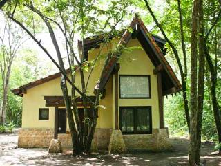 Casa Loco - Playa Grande vacation rentals