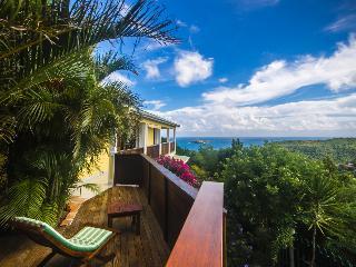 Villa Natanya - Saint Barts - Colombier vacation rentals