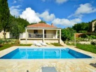 Pool House - Radovici vacation rentals