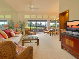 Air Conditioned Kapalua Ridge Luxury - Kapalua vacation rentals