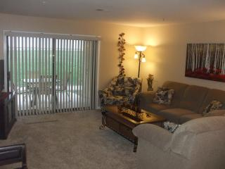 *By Strip*Nice*Walk-In*Pools*Hot Tub*Sauna*Golf* - Branson vacation rentals