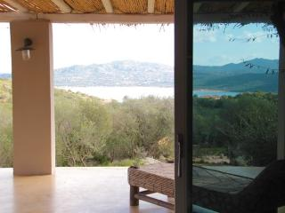 smart villa with private pool and sea view - Olbia vacation rentals