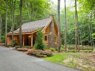 Cold Mountain Pond - Blue Ridge GA - Blue Ridge vacation rentals
