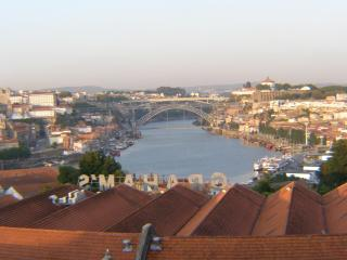 River View Flat - Historical Porto - Beja District vacation rentals