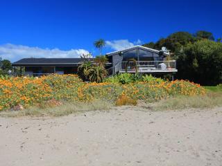 PALM BEACH - Oneroa vacation rentals