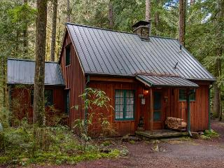 Vintage Cabin on Still Creek-Hot Tub-Book Now get 3rd night Free thru May 20 - Rhododendron vacation rentals