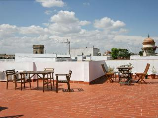 Columns Duplex Terrace and Patio Seville old town - Seville vacation rentals