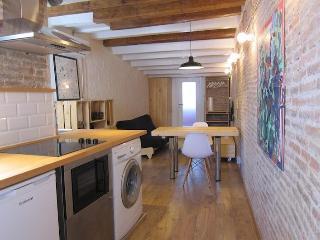 DESIGN BRAND NEW LOFT CLOSE TO PLAZA CATALUNYA - Barcelona vacation rentals