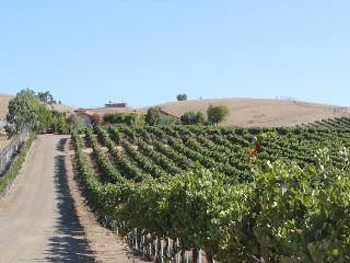 Solitude I - Paso Robles vacation rentals