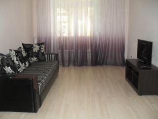 Zaporizhia Oblast Zaporizhzhya 2-rooms apartment - Zaporizhzhya vacation rentals