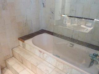 Central: Romantic Loft *410sqft* 2stops Notre Dame - Ile-de-France (Paris Region) vacation rentals