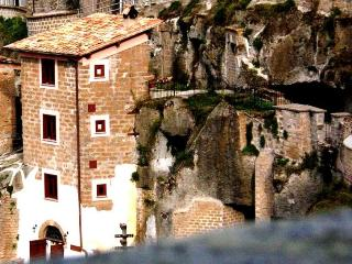 Torre Avellana - Hazelnut tower - Vignanello vacation rentals