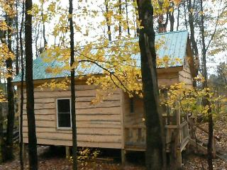 GREAT CABIN CLOSE TO FISHING & OUTDOOR RECREATION - Camden vacation rentals