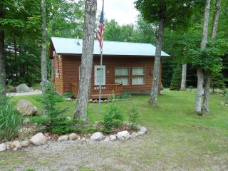 Adirondack Vacation Cabin - Brantingham vacation rentals