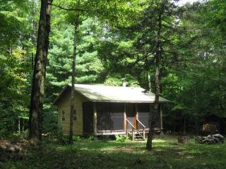 Woodland retreat - cabin near Oneida Lake - Cleveland vacation rentals