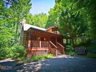 Bear's Lair 2 Bedroom 2bath Pet Friendly Log Cabin Pigeon Forge/Gatlinburg TN - Sevierville vacation rentals